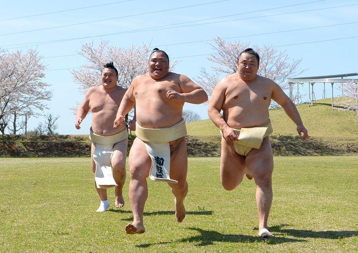 巡業での山稽古。 #相撲