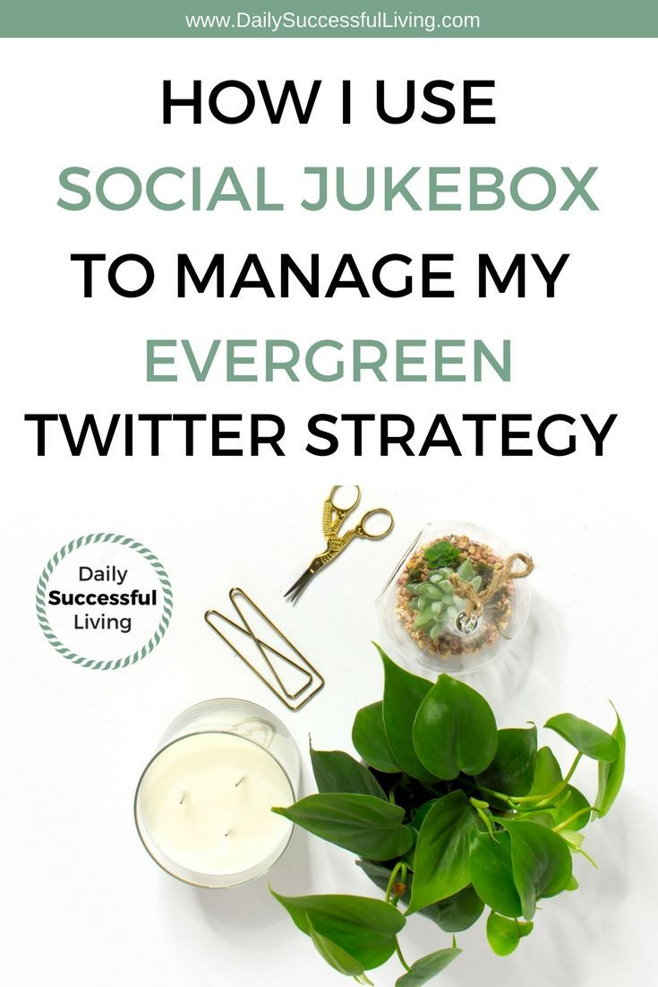An effective evergreen content sharing strategy is essential for your blog. I use Social Jukebox to automate a portion of my Twitter account to increase productivity. Sharing evergreen blog content has increased my blog traffic and made content creation easier. | blogging tips | social media tips for bloggers | Twitter tips for Bloggers | How to share evergreen blogging content | #bloggingtips #socialjuke #socialjukebox #evergreencontent