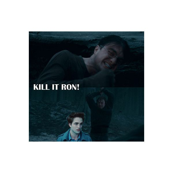Twilight Sucks ❤ liked on Polyvore featuring harry potter, funny, quotes, pictures, hp, saying, phrase and text