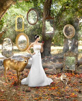 Google Image Result for http://www.brides.com/weddedbits/snow-white-wedding-dress-kirstie-kelly-disney-bridal_main.jpg