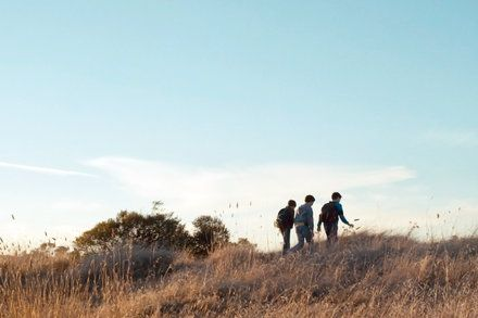 Review: In Yosemite a Coming-of-Age Tale of 3 Boys in 1980s California from GLENN KENNY at the New York Times. #movies