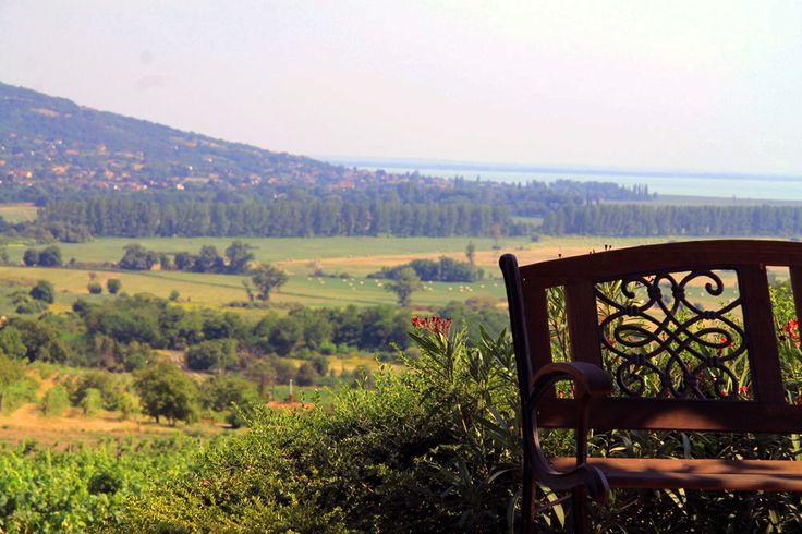 Szent György hegy, 2HA Pince #Balaton #hungary #wine