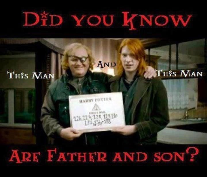 Brendan Gleeson (Mad-Eye) and Domhnall Gleeson (Bill Weasley) = Father and Son. (Whut! *speechless*)