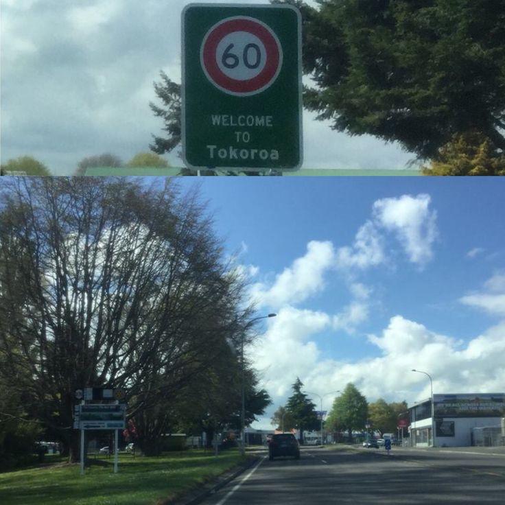 Tokoroa, New Zealand