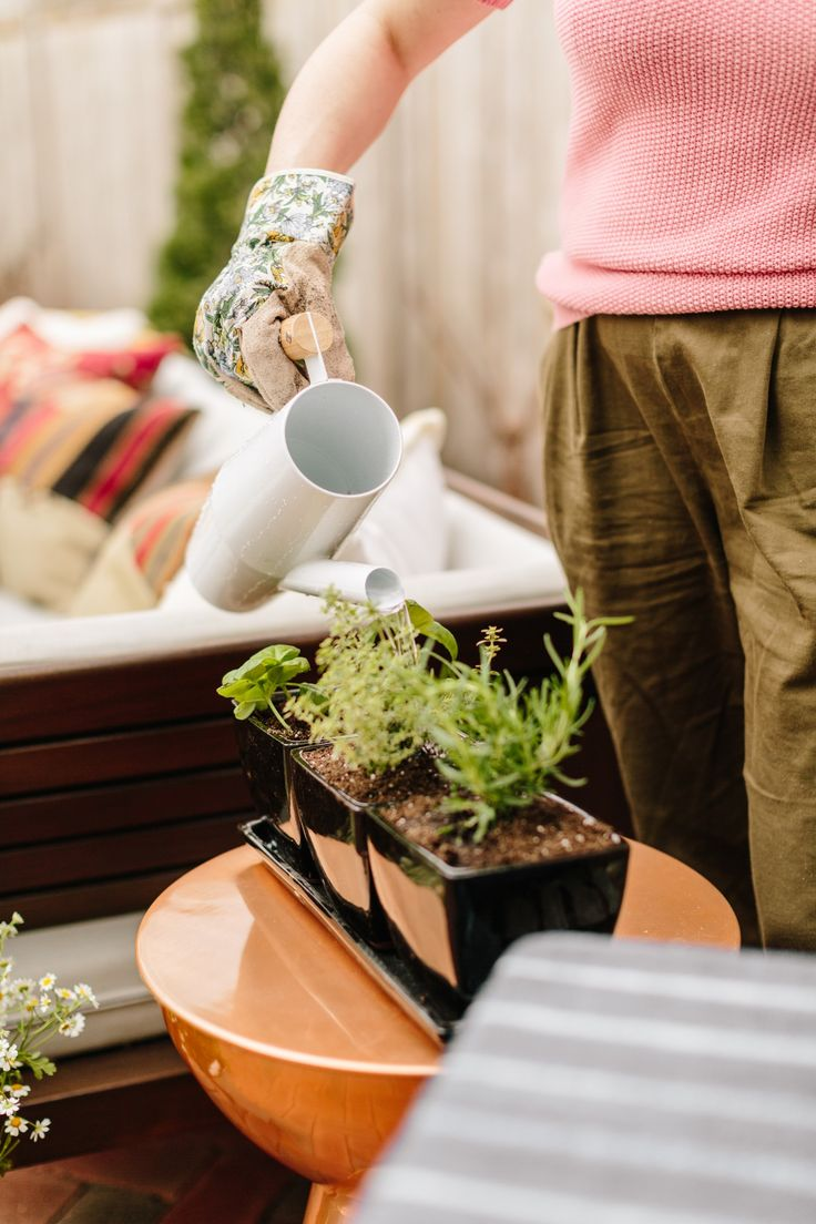 The big list of self watering planters for stylish gardening anywhere -  Ad Watering The Freshly Planted Garden Plants Miraclegro Andproject