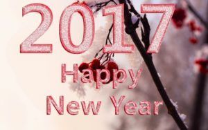 Happy New Year 2018 Quotes :   Image   Description  happy-new-year-images-quotes-2017-happy-new-year-2017-wishes-happy-new-year-2017-images