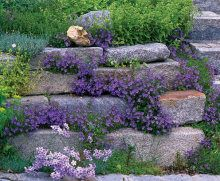 Rock Garden Landscaping | Rock Garden Landscaping.... Not Natural In Nature,