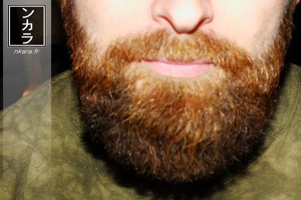 Taille de barbe : style Henry IV by N'Kara