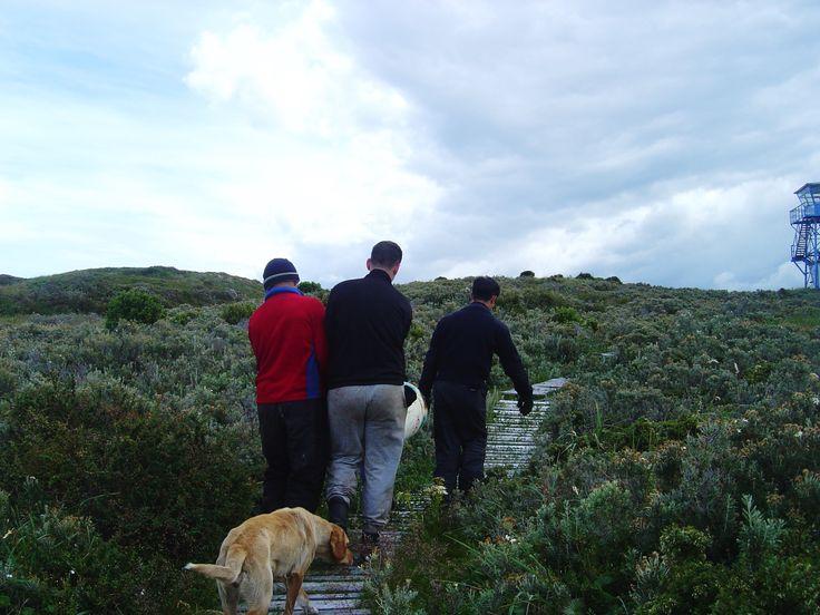 Islote Snipe, sendero de acceso a Alcaldia de Mar.