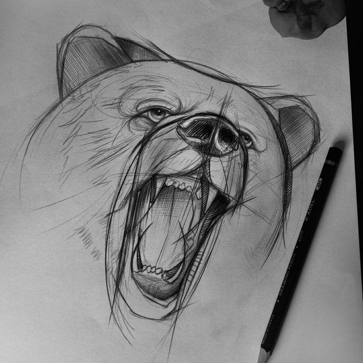 Custom Tattoo  Antalya Bear Sketch Pinterest 곰