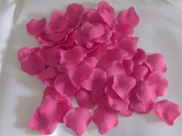 1000-mil-petalas-de-rosas-cor-pink-rosa.jpg (580×435)