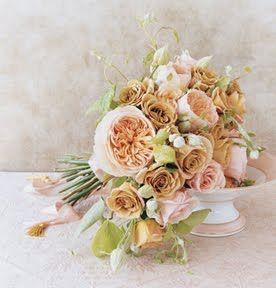 Juliet roses.