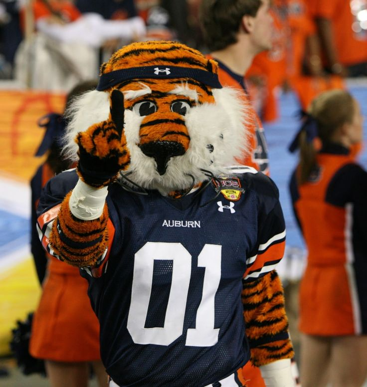 29 best cooler images on pinterest frat coolers fraternity auburn tiger voltagebd Image collections