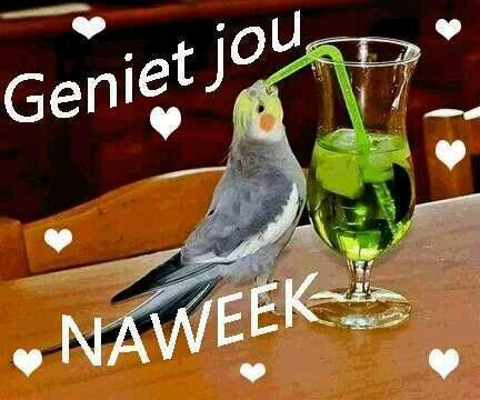 Geniet ♡jou♡naweek