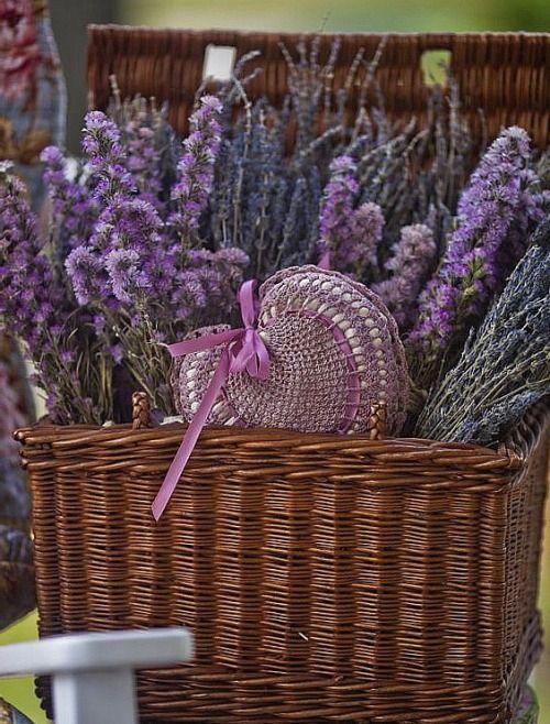Lavender:  #Lavender in basket.