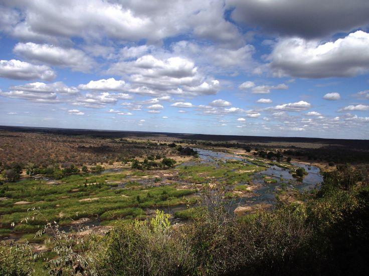 Olifantsrivier in the Kruger National Park SA