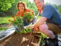 Here is a list of U.S. garden seed catalogs and nursery mail-order sources.