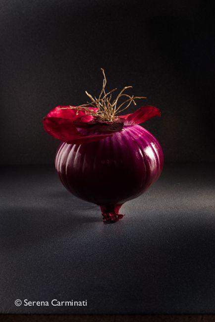 Red Onion On Dark Background