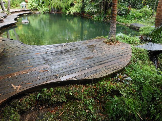 17 best ideas about swimming ponds on pinterest natural for Natural pond maintenance