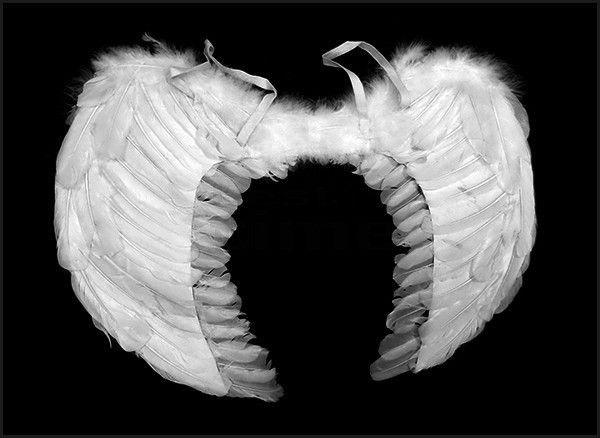Skrzydła anioła 60x40cm białe na imprezę | Przebrania | Upominki24.com