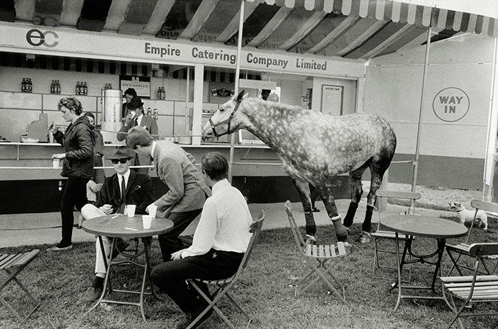 Tony Ray-Jones: Windsor Horse Show