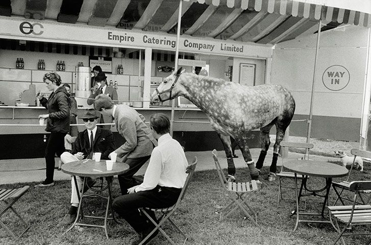 Tony Ray-Jones: Windsor Horse Show