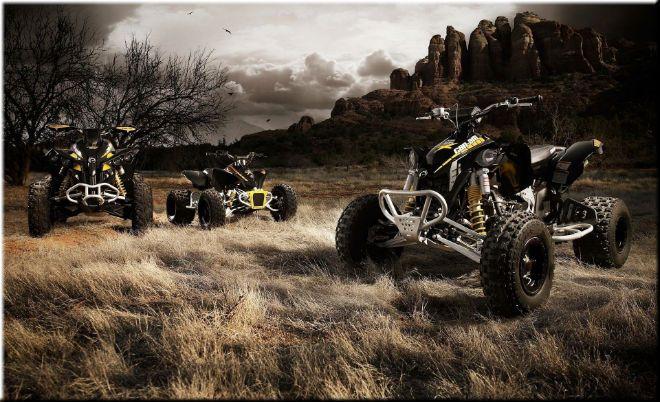 Квадроциклы и другая мототехника в магазине Motor4ik Источник: Мотосалон motor4ik.ru