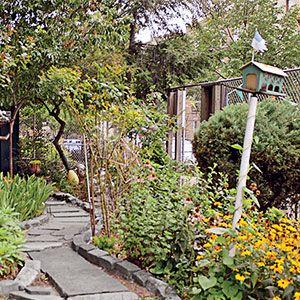 Growing an Urban Vegetable Garden : Organic Gardening: Fruit Vegetable Garden, Organic Gardening, Garden Ideas, Gardening Ideas, Food Bank, Container Gardening, Vegetable Gardens, Small Garden
