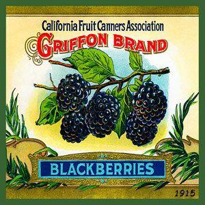 Olde America Antiques   Quilt Blocks   National Parks   Bozeman Montana : Vintage Canning Labels Hot Pads - California Fruit Raspberries