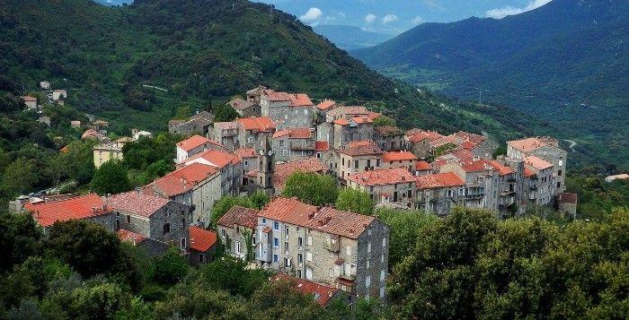 Sainte-Lucie-de-Tallano, capitale corse de l'huile d'olive.