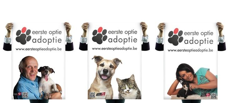 """Voor de Provincie Limburg in België heb ik de promotie campagne van """"eerste optie adoptie"""" ontwikkelt om asieldieren in een meer positief daglicht te stellen. In plaats van de negatieve of zelfs """"oh kijk wat zijn ze zielig"""" benadering die steeds werd gebruikt. Door deze positieve aanpak zorgt het ervoor dat bij aanschaf van een huisdier eerst naar asieldieren wordt gekeken. Campagne items: Logo, folder ontwerp, website, promotie fotografie, posters, banner en een  Facebook ontwerp."""