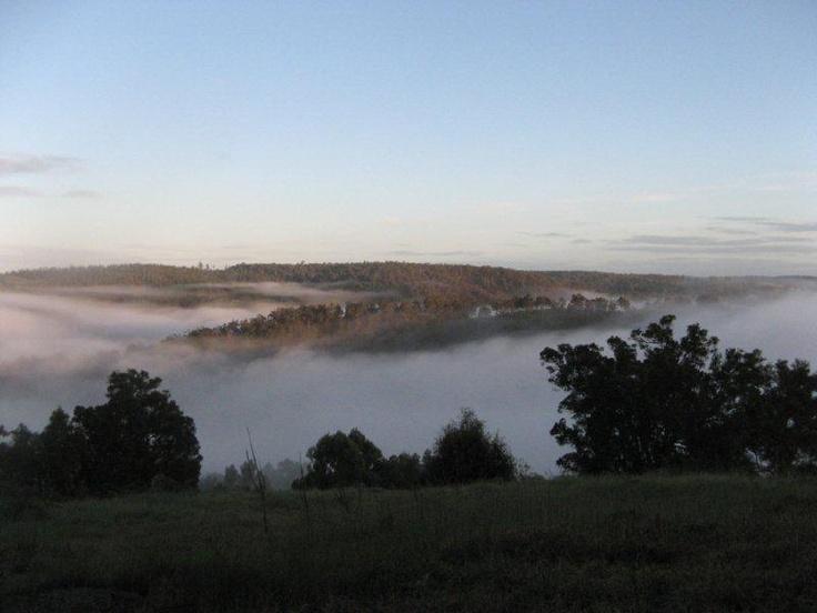 Mist at Blackwood