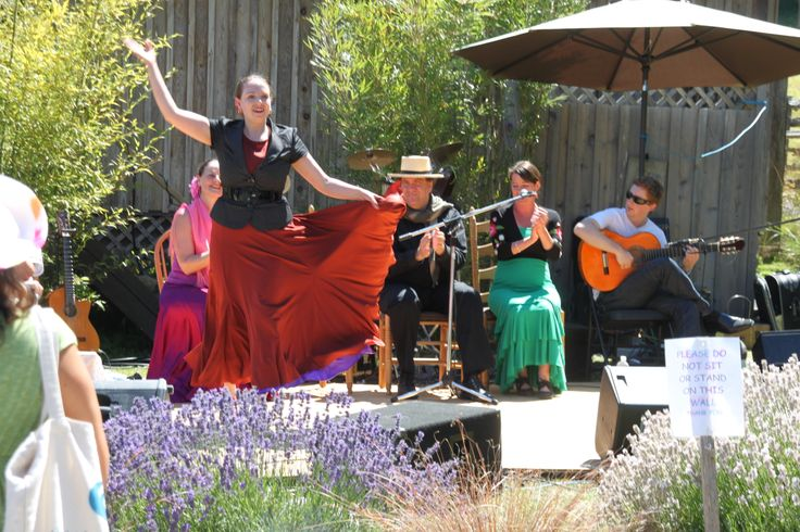 Flamenco dance entertainment at the Lavender Festival