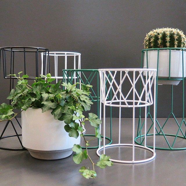 Lyft upp dina växter från fönstret med piedestaler i grafisk design. Kan användas upp och ner för variation och för att få upp dina krukor i olika höjd. Finns i färgerna svart, vit, petrolgrön & koppar. Låg piedestal, 315kr. Hög piedestal, 349kr. #roombutiken