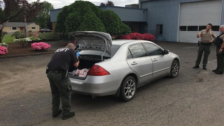Shotgun fires while deputies investigate domestic disturbance in Hazel Dell