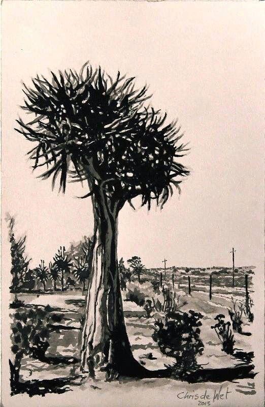 Quiver Tree De Hoop - Ink on Fabriano