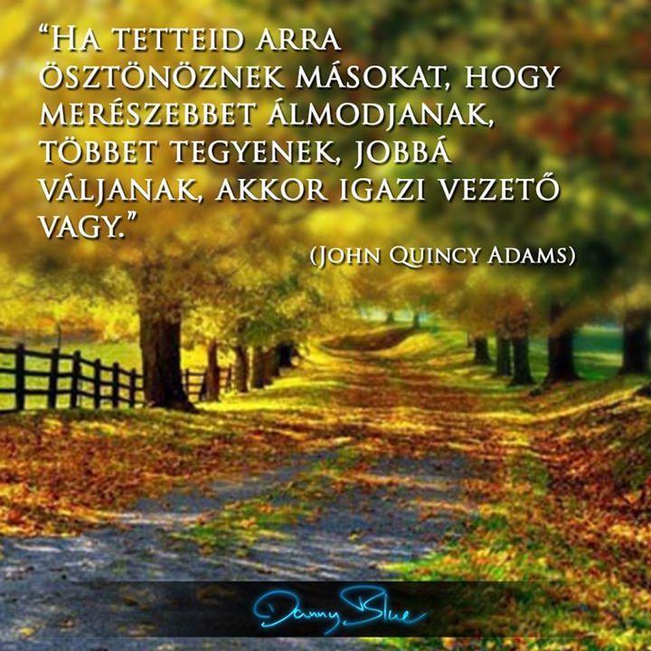 John Quincy Adams gondolata mások ösztönzéséről. A kép forrása: Danny Blue # Facebook