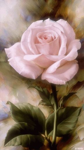 Rose Animated