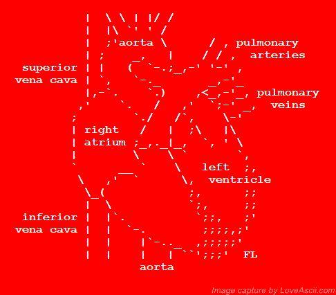 12 Best Ascii Art Images On Pinterest Ascii Art Heart And Hearts