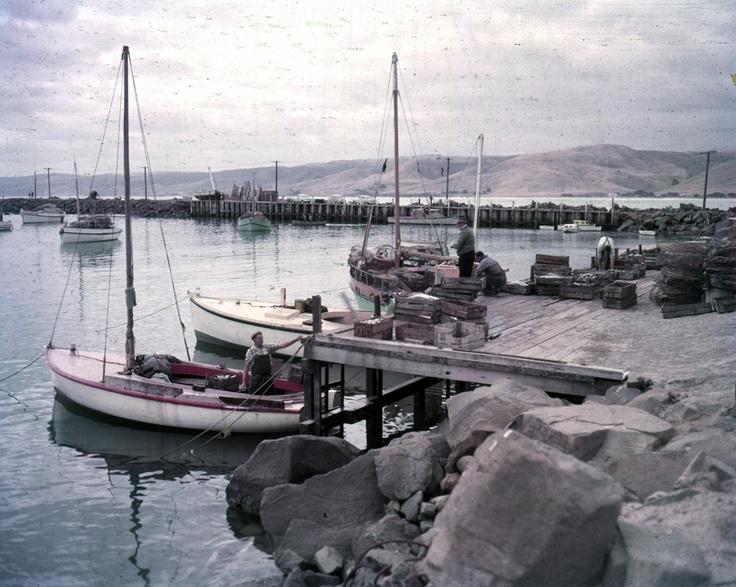 1960 Barracouta fishing in Apollo Bay. VicRoads Centenary: 1913 - 2013. www.vicroads.vic.gov.au/centenary