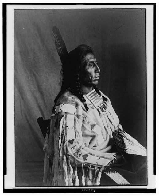Crow Chief, Medicine Crow 1904