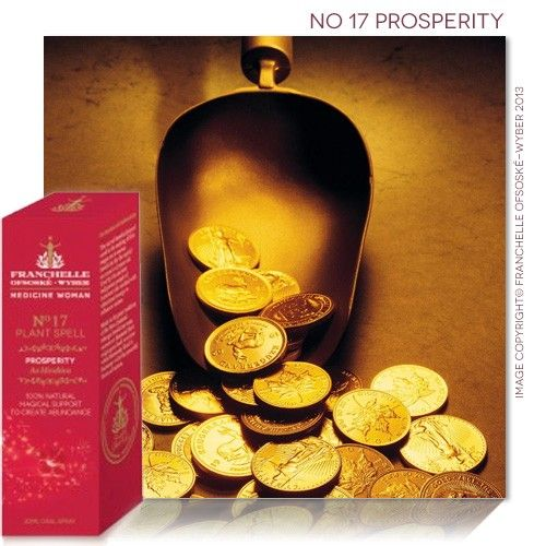 No 17 Prosperity Spell
