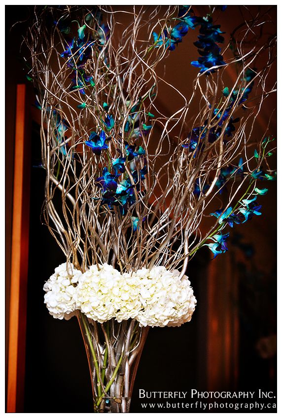 Curly Willow tree with blue orchids and hydrangea. Fun way to add a pop of color to a centrepiece.   Decor by Lavish Design Photo by Butterfly Photography