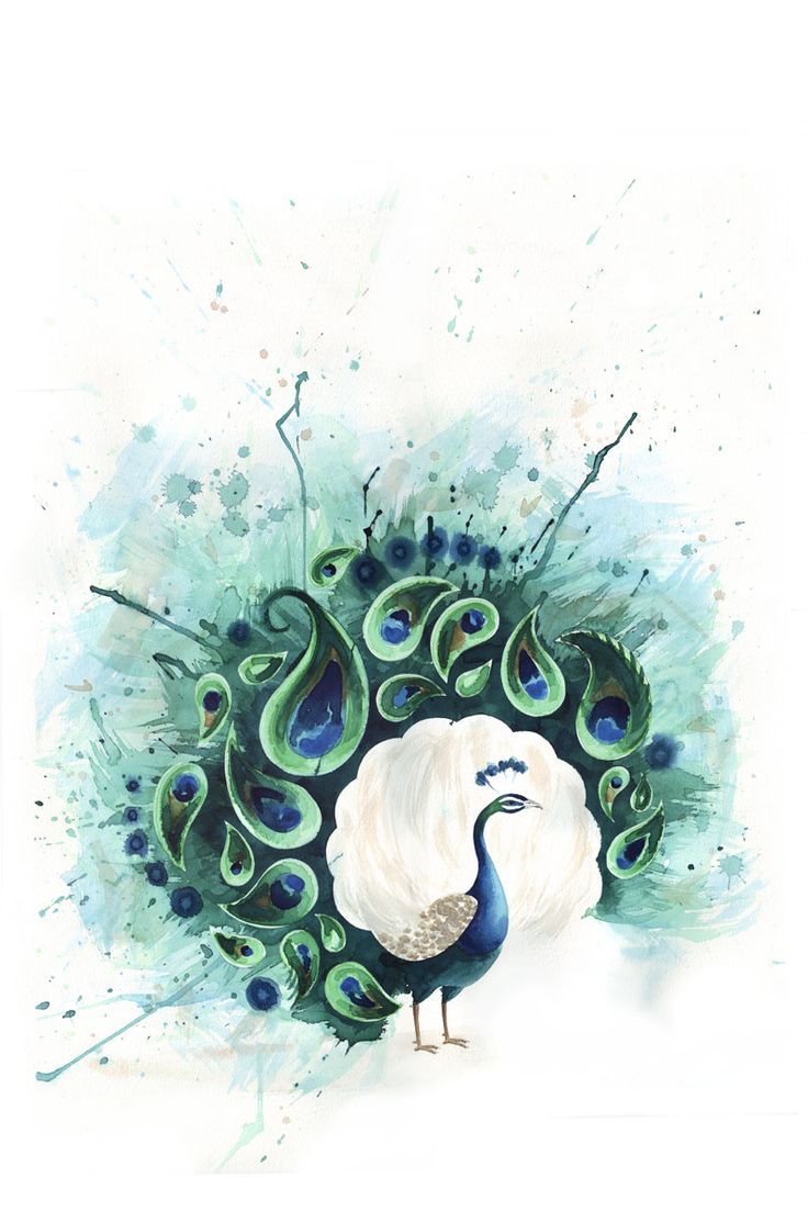 peacock water color - this would make an awesome tattoo