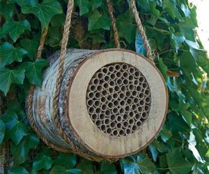 Have you ever heard of a Mason Bee? I hadn't, but they are definitely great bees to have around your garden. Unlike most bees, the Mason Bee is a peaceful non-stinging bee that is also a legendary pollinator. These cool bees each visit and pollinate nearly 100 blooms each day, so it would be wise to give them a good home close by with the Mason Bee House.