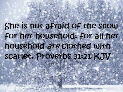 Image result for proverbs 31:21