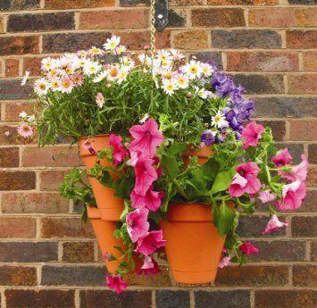 Solus Garden and Leisure Ltd Nortene Botanico, Vasi a grappolo da appendere: Amazon.it: Giardino e giardinaggio