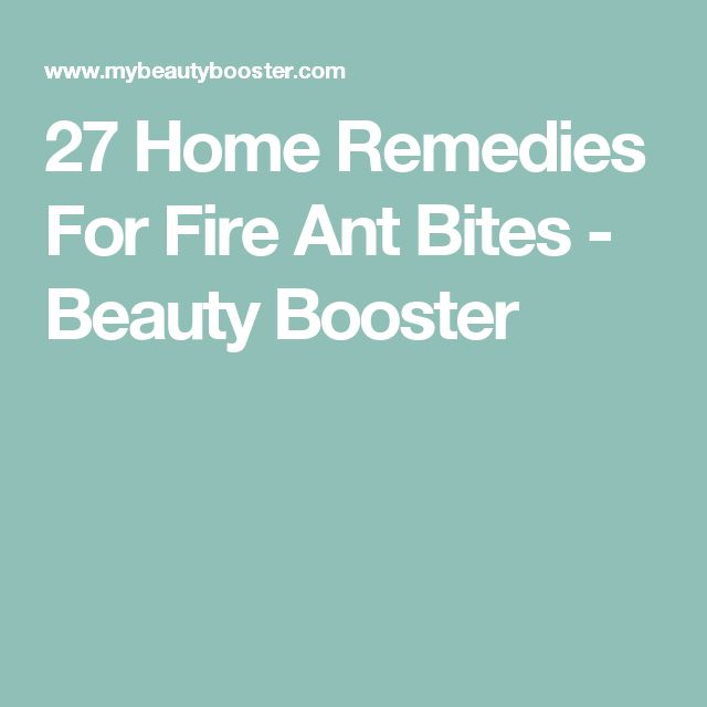 27 Home Remedies For Fire Ant Bites - Beauty Booster