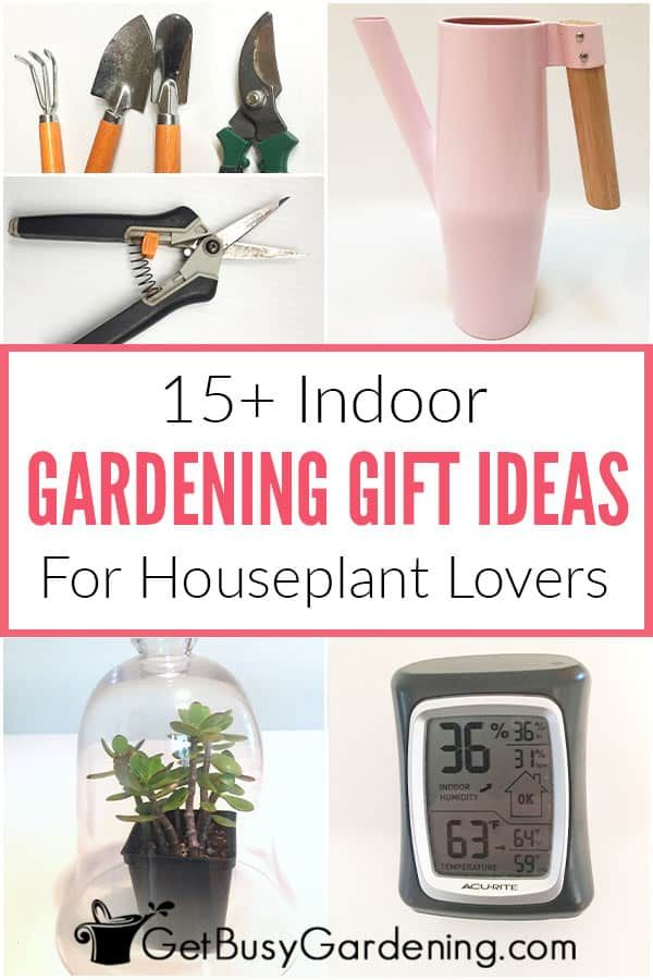 15 Indoor Gardening Gift Ideas For, What To Gift Someone Who Loves Gardening