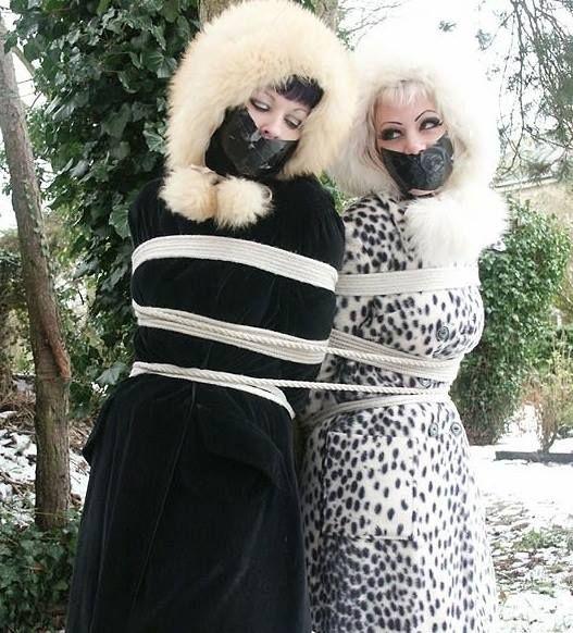 57 Best Images About Dreams Fur Bondage On Pinterest